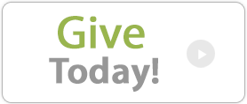 give today donation button